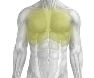 Front-of-Chest-Featured